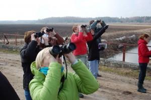 Mirklis no putnu vērošanas ekskursijas. Autore V.Caune